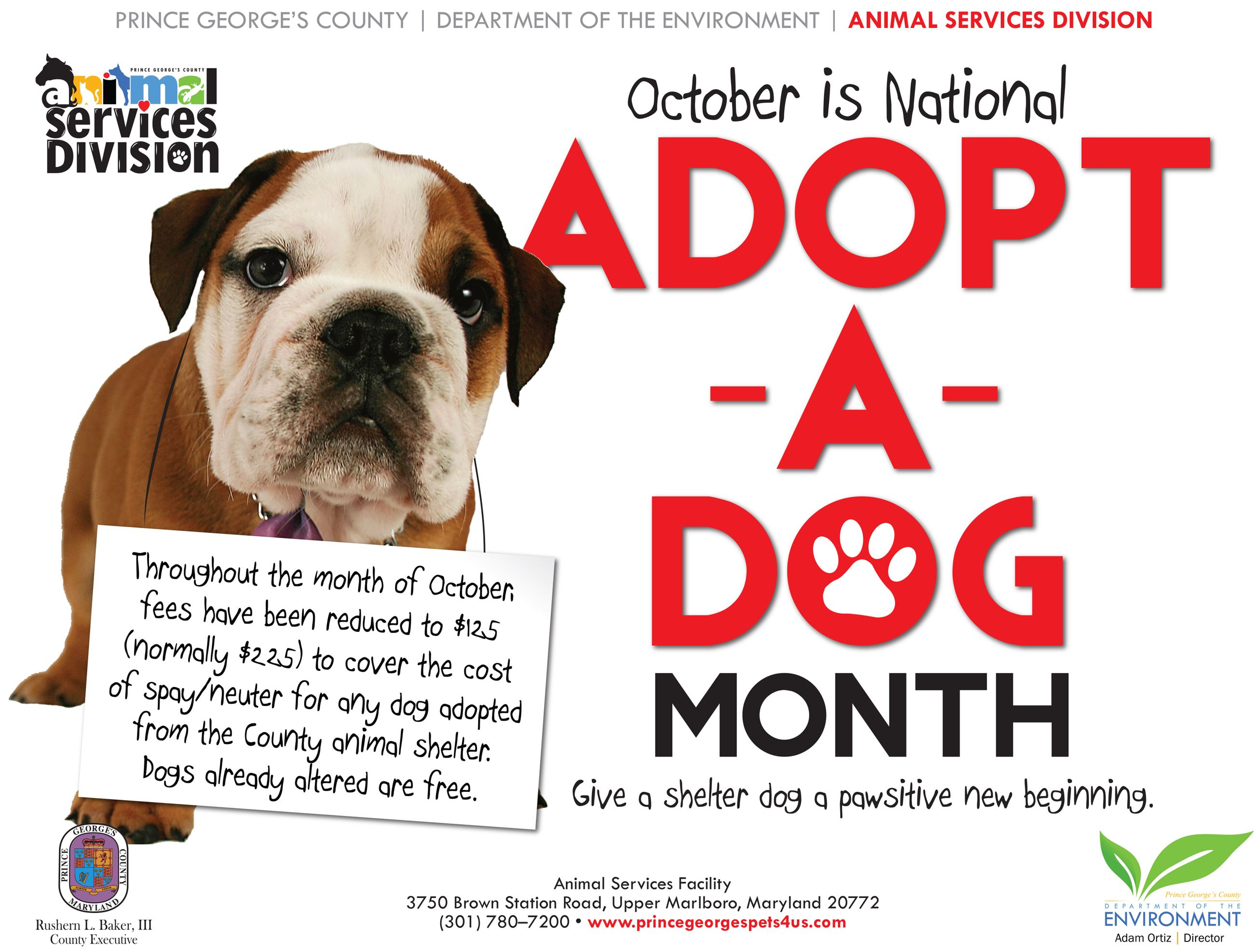 adoptadogmonth1_flyer_2017_v