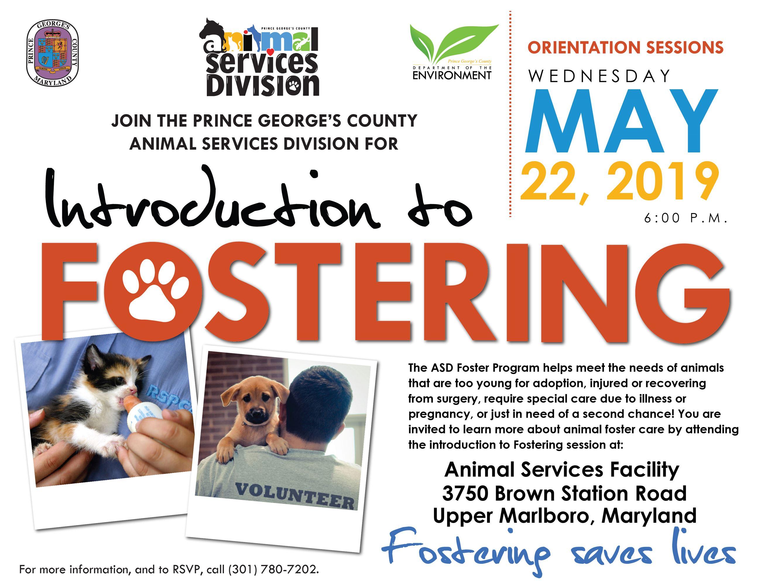 foster orientation UPDATED 5 22 19