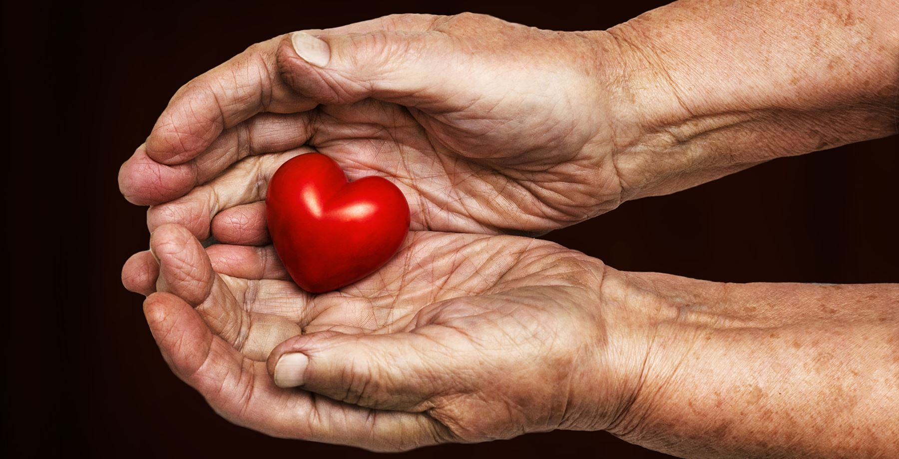 Heart in the Center of Hands