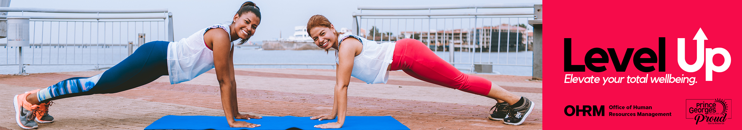 level up--banner--red small
