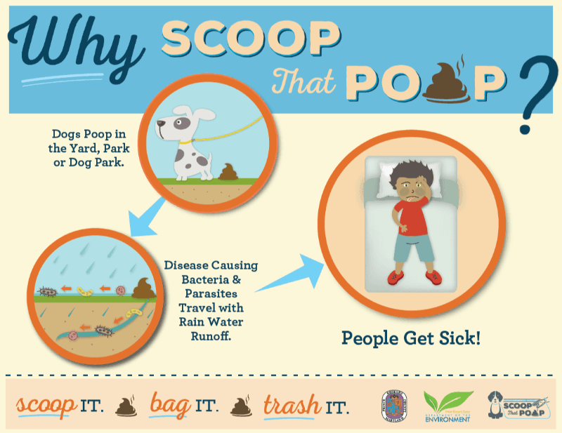 Why Scoop That Poop